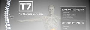Avon Chiropractic Clinic's Company logo